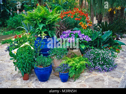 Collection of colourful planted pots in a mediterranean garden - Stock Photo