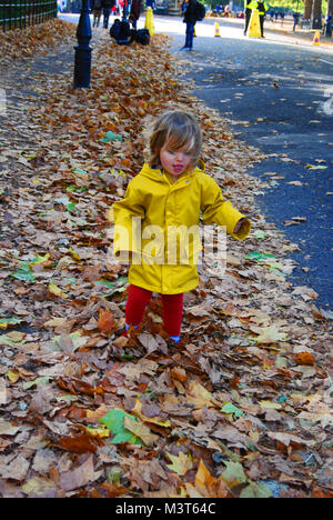 Playing in Leaves - Stock Photo