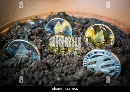 Symbolic golden coin of bitcoin crypto currency growing in soil - Stock Photo