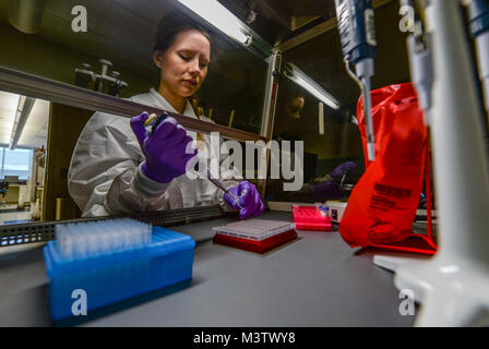 Marie Powell, general supervisor of molecular diagnostics, draws human biological samples before testing them for - Stock Photo