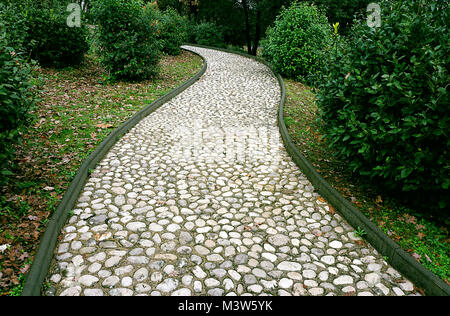 Stone pathway in the park. Stone path made from a pebble. Path surround with green plants. - Stock Photo