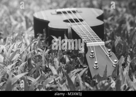 Acoustic Guitar Close Up On White Background Abstract Black And Image Of Musical Instrument Ukulele Green Grass