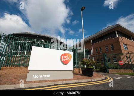 GlaxoSmithKline Montrose plant, Angus, Scotland. - Stock Photo