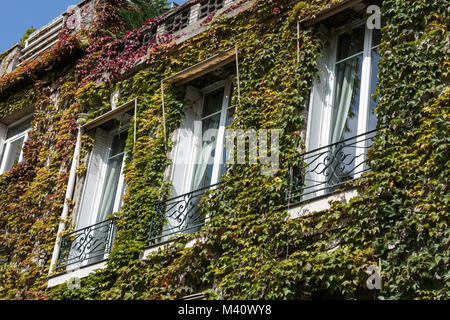 Paris - Old house covered by ivy in Montmartre. - Stock Photo