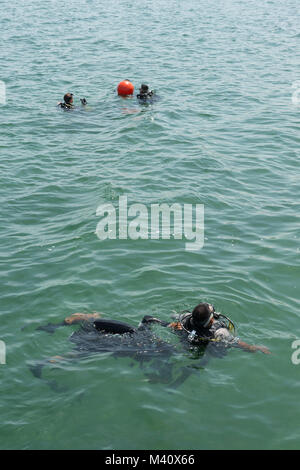 {150907-N-BJ295-131} PUERTO BARRIOS, Guatemala (Sept. 07, 2015) Two Guatemalan divers perform buddy checks during - Stock Photo