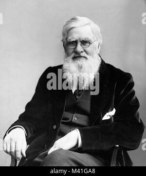 Alfred Wallace. Portrait of the English naturalist, Alfred Russel Wallace (1823-1913) - Stock Photo