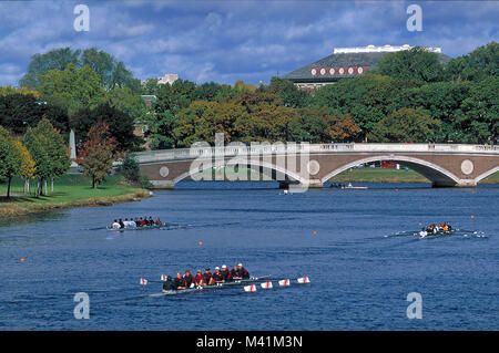 United States, Massachusetts, Harvard university in Cambridge, bridge on the Charles River and training of the students - Stock Photo