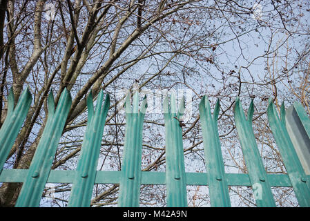 A pretty teal gate surrounded by trees with a blue sky background. The shot was taken close to Edinburgh Park, Scotland. - Stock Photo
