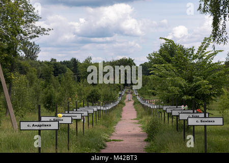 Crosses bearing the names of the villages evacuated after the Chernobyl nuclear accident in 1986 - Stock Photo