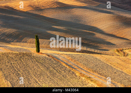Europe,italy,Tuscany,Siena district,Orcia valley. - Stock Photo