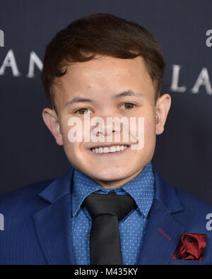 Westwood, California, USA. 13th Feb, 2018. Sam Humphrey arrives for the 'Annihilation' Los Angeles Premiere at the - Stock Photo