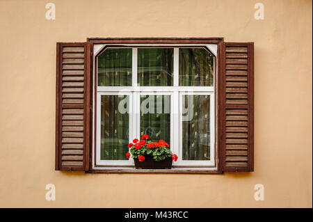 Window with shutters and flower - Stock Photo