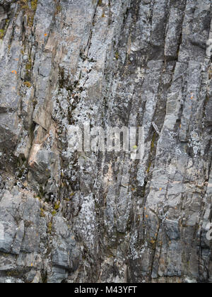 Vertical layers of light, medium and dark gray rock with green moss growing of the face. Photographed in Cierva - Stock Photo