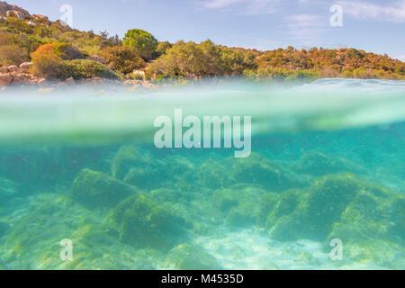 Half underwater photo with the sea bed and trees in arinella (Olbia), Olbia-Tempio province, Sardinia district, - Stock Photo