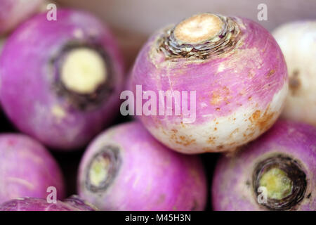 turnips for sale - Stock Photo