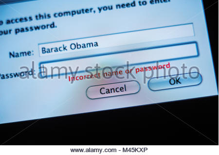 Closeup of Name and Password Box in computer log-in - Stock Photo