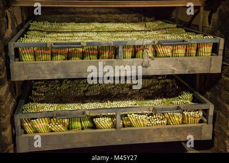 Cigar factory in Myanmar - Stock Photo