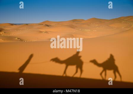 Camel shadows on Sahara Desert sand in Morocco. - Stock Photo