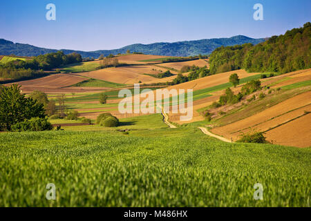 Idyllic springtime landscape view of fields and meadows - Stock Photo