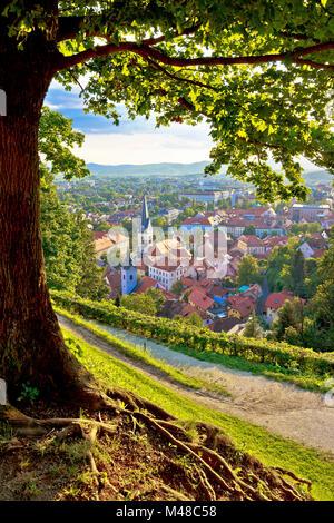 Green capital of Europe 2016 Ljubljana - Stock Photo