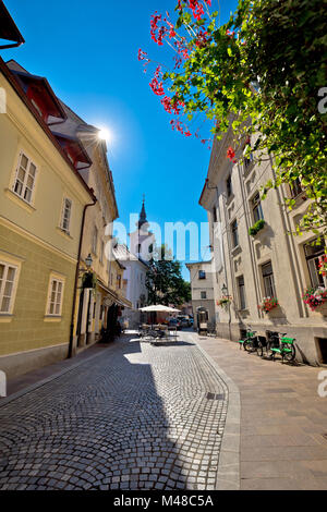 Cobbled old street and church of Ljubljana - Stock Photo