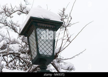 Decorative vintage street lamp painted in dark green. Snow covered tree in the background. White sky of the snowy - Stock Photo