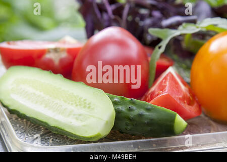 Different ripe organic vegetables and fresh herbs on a tray - Stock Photo