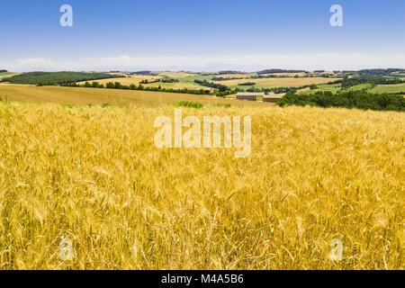Landscape near Toulouse, France - Stock Photo