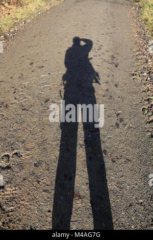 Shadow of a photographer cast onto a forest track on a sunny day. - Stock Photo