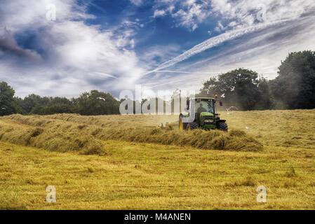 Cutting hay tractor in summer time against blue cloudy sky,  haystacks on the field - Stock Photo