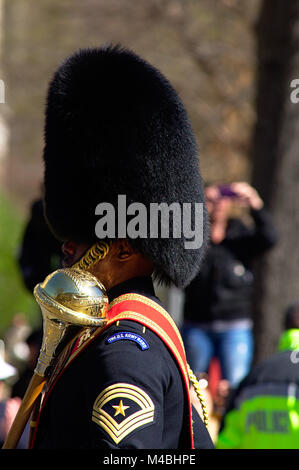 US Army Guard Band during Cherry Blossom Parade 2017 in Washington DC - Stock Photo
