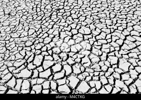 soil drought cracks texture background for design. black and white picture - Stock Photo