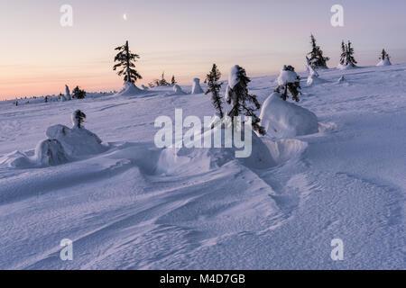 Morning mood, Riisitunturi National park, Lapland, Finland - Stock Photo