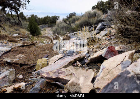 A dry stream bed filled up with rocks in the Utah desert. - Stock Photo