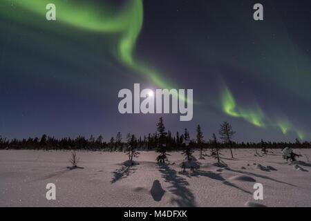 Northern lights above moonlit landscape, Lapland, Sweden - Stock Photo