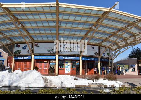 Mystic Aquarium in Connecticut - Stock Photo