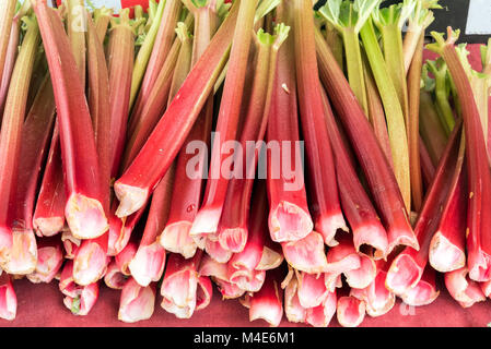Fresh rhubarb for sale at a market - Stock Photo