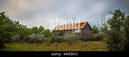 abandoned log cabin house deep woods in texas - Stock Photo