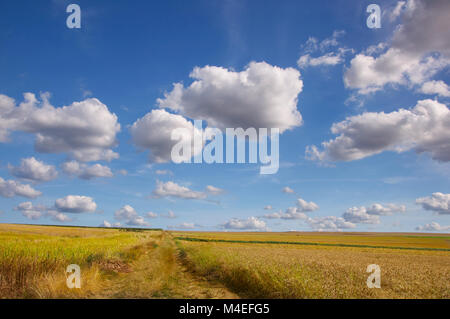 Rural landscape,Mertloch,Mayen-Koblenz,Rhineland-Pfalz,Germany - Stock Photo
