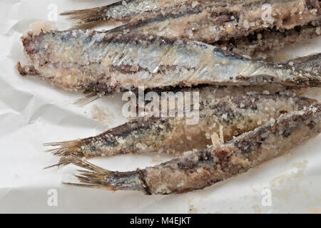 sardines salted anchovies on paper 3 - Stock Photo