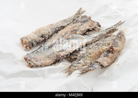 sardines salted anchovies on paper 4 - Stock Photo