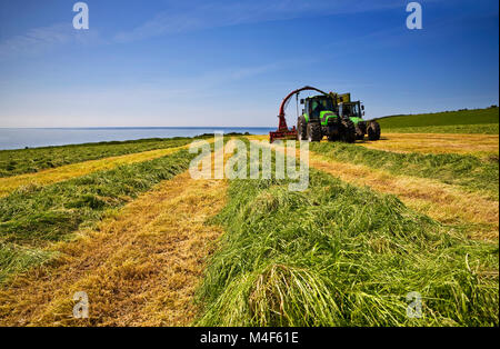 Summer Silage Cut, Near Bunmahon, County Waterford, Ireland - Stock Photo