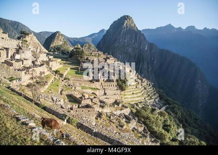 Ruins of Machu Picchu city in the morning, Peru - Stock Photo