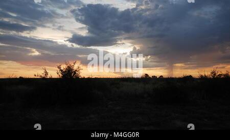 Central Kalahari Game Reserve sunset africa botswana - Stock Photo