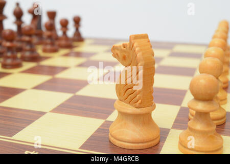 White knight looking at the black lining - Stock Photo