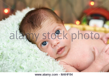 Newborn baby boy christmas vintage stock photo