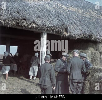 German officers in front of a shed on the Eastern front, where women work with hay. - Stock Photo