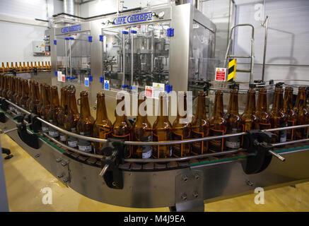 Empty beer bottles, on a conveyor belt, Binding brewery - Stock Photo