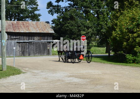 A Mennonite family coming back from church in their horse and buggy, are stopping at a stop sign before carrying - Stock Photo