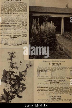 Barnard's seeds, bulbs, shrubs 1919 (1919) (19733141103) - Stock Photo